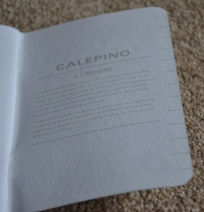 Inside the Back Cover of the Calepino Notebook