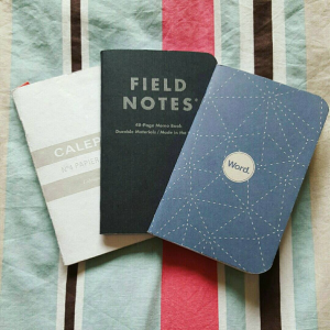 Pocket Notebooks